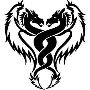 Dragon Tattoo Design - see more designs on http://thebodyisacanvas.com