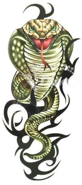 Snake Tattoo Design - see more designs on http://thebodyisacanvas.com